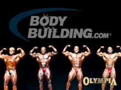 Olympia Line-Up